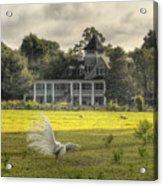 Magnolia Plantation House Acrylic Print