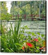 Magnolia Plantation Swamp Garden Acrylic Print