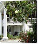 Magnolia Plantation Acrylic Print