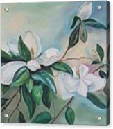 Magnolia Summer Acrylic Print