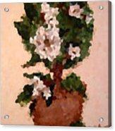 Magnolia Topiary IIi  Acrylic Print