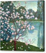 Magnolia Acrylic Print by Wilhelm List