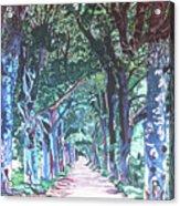 Mahogany Avenue Acrylic Print