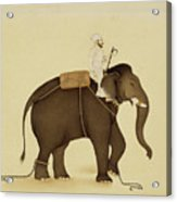 Mahout Riding An Elephant Painting - 18th Century Acrylic Print