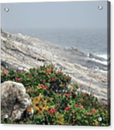 maine 13 Pemaquid Lighthouse Shoreline Before Storm Acrylic Print