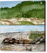 Maine Beach Wood Acrylic Print