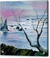 Maine Seawatch Acrylic Print