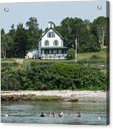 Maine Summer Acrylic Print