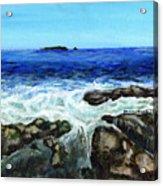 Maine Tidal Pool Acrylic Print