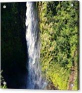 Majestic Akaka Falls Acrylic Print