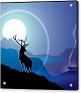 Majestic Elk Coolridge Acrylic Print