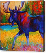 Majestic Monarch - Moose Acrylic Print