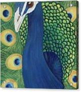 Majestic Peacock Acrylic Print by Lisa Bentley