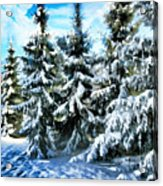 Majestic Winter In New England  Acrylic Print