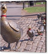 Make Way For The Ducklings Acrylic Print