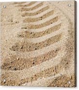Making Tracks Acrylic Print