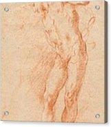 Male Nude [verso] Acrylic Print