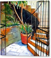 Maltese Experience Acrylic Print