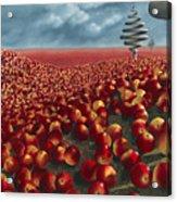 Malus Arvum Acrylic Print