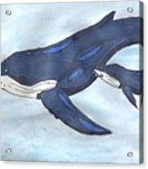 Mama Whale Acrylic Print