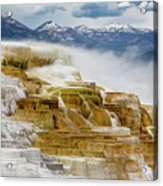 Mammoth Hot Springs In Yellowstone National Park, Wyoming. Acrylic Print