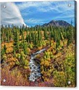 Mammoth Lakes Autumn Falls Acrylic Print