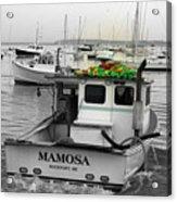 Mamosa Acrylic Print