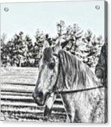 Man And His Horse Acrylic Print