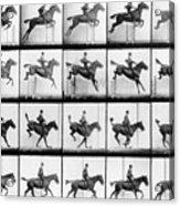 Man And Horse Jumping Acrylic Print
