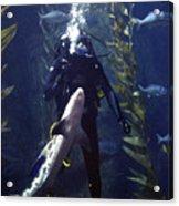 Man And Shark Acrylic Print