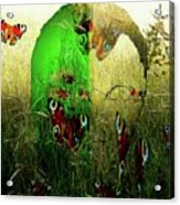Man Front Of Mother Nature Acrylic Print