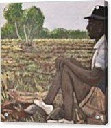 Man In Field Burkina Faso Series Acrylic Print