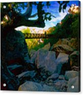 Man On The Bridge Acrylic Print