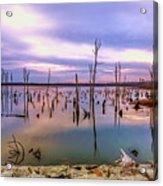 Manasquan Sunrise Acrylic Print