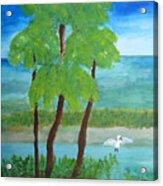 Manatee Refuge Part 1 Acrylic Print