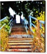 Manayunk Steps Acrylic Print