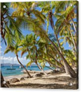 Manchioneel Bay, Cooper Island Acrylic Print