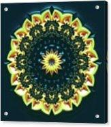Mandala 467567 Acrylic Print