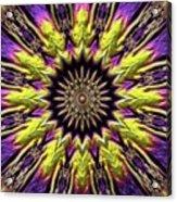 Mandala 574535 Acrylic Print