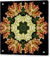 Mandala Autumn Star Acrylic Print