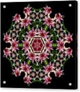 Mandala Monadala  Lisa Acrylic Print