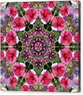 Mandala Pink Patron Acrylic Print