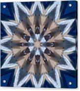 Mandala Sea Star Acrylic Print