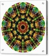 Mandala - Talisman 1103 - Order Your Talisman. Acrylic Print