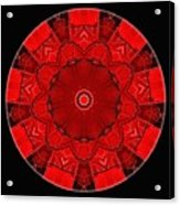 Mandala - Talisman 1542 Acrylic Print