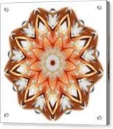 Mandala - Talisman 1620 Acrylic Print