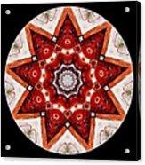 Mandala - Talisman 4009 Acrylic Print