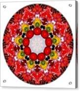 Mandala - Talisman 4010 Acrylic Print