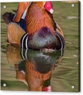 Mandarin Reflection Acrylic Print