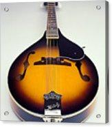 Mandolin  Acrylic Print